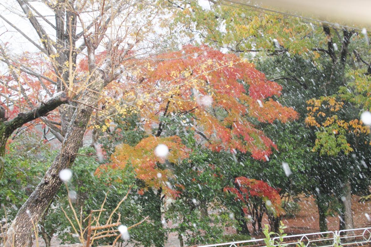 雪の日のこどもたち